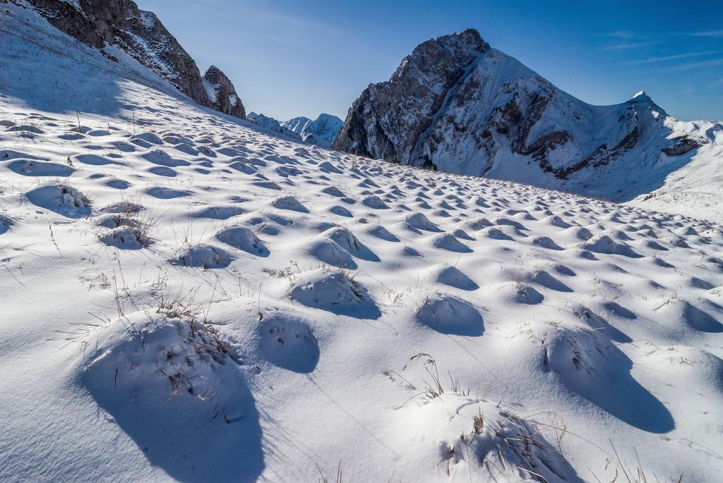 31. Plis du Mt Trélod - Bauges - Savoie
